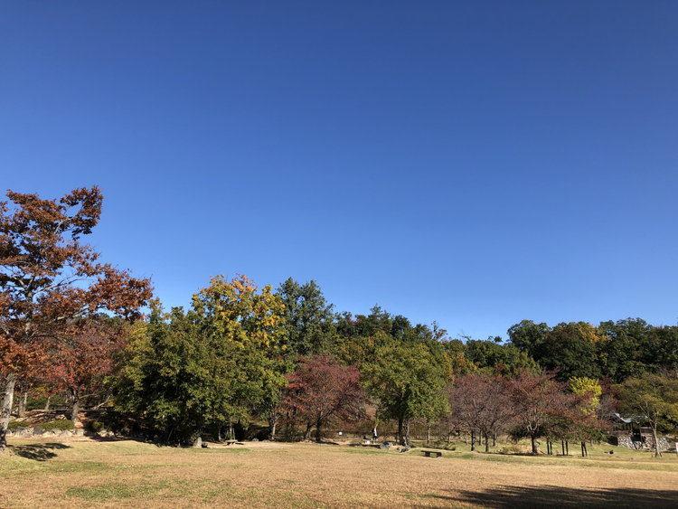 雲ひとつない青空の写真