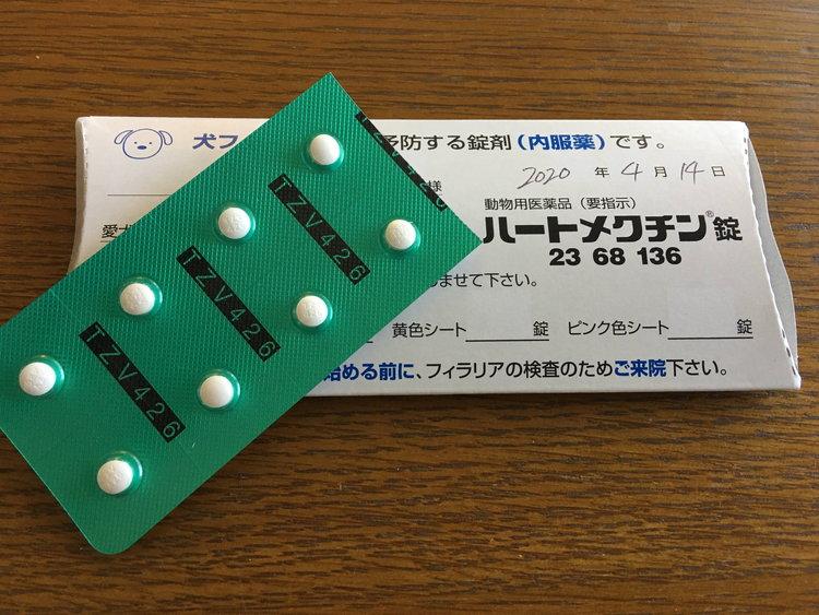 フィラリア予防薬の写真